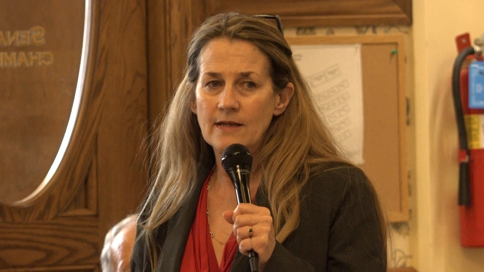 State Sen. Mary Caferro, D-Helena