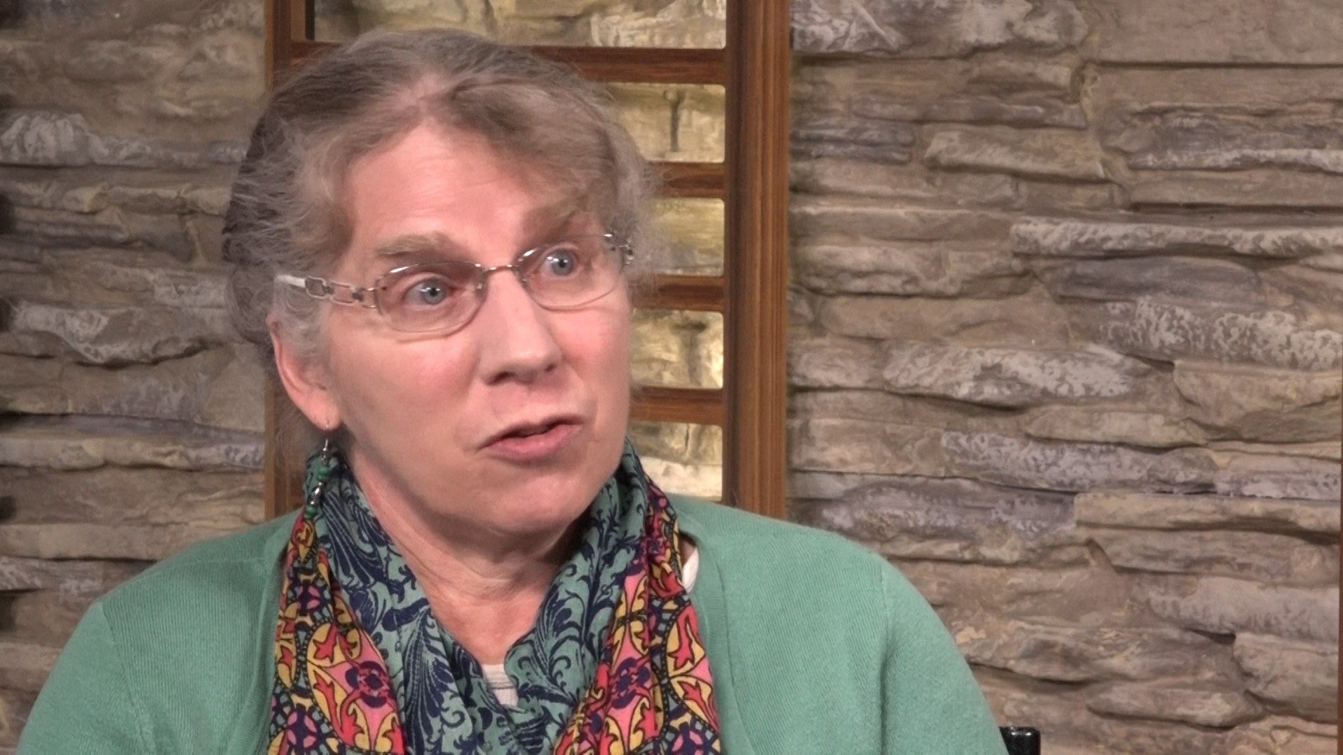State Rep. Janet Ellis, D-Helena